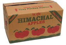 ABOX fruit-corrugated-box-500x500
