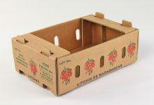 BOX-1000 (39)