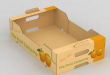 BOX-1000 (3)