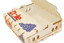 BOX-1000 (36)