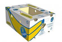 BOX-1000 (44)