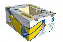 BOX-1000 (23)
