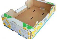 BOX-1000 (30)