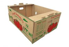 BOX-1000 (12)