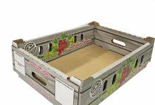 BOX-1000 (38)